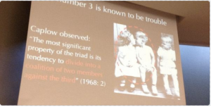 A slide from Tanya Stivers' IPrA plenary - the trouble with 3